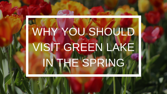 WHY-YOU-SHOULD-VISIT-GREEN-LAKE-IN-THE-SPRING
