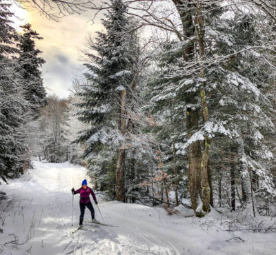 A woman ski's in the woods cross country